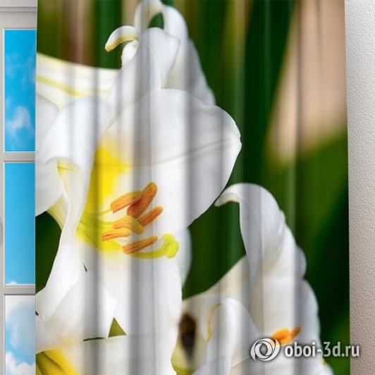 Фотошторы «Белые лилии» вид 2