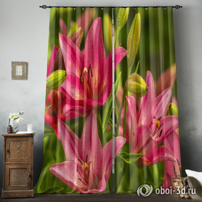 Фотошторы «Клумба розовых лилий» вид 8