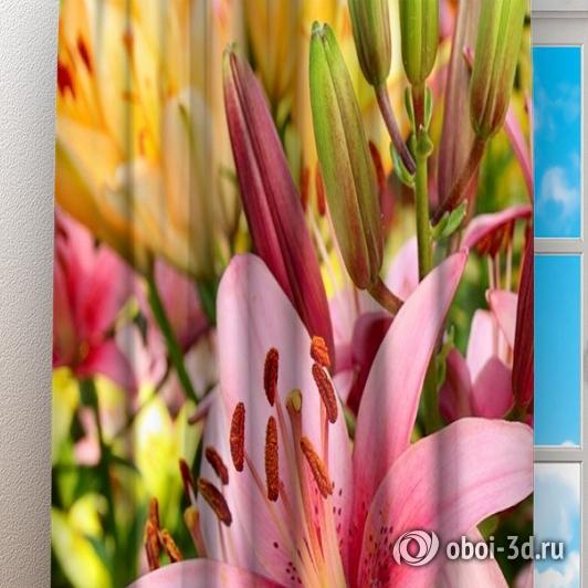 Фотошторы «Нежно-розовые лилии» вид 3
