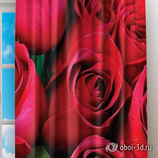 Фотошторы «Нежные бордовые розы» вид 2