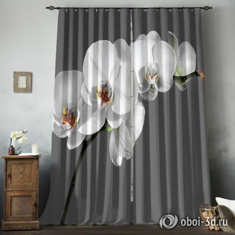 Фотошторы «Белая орхидея на сером фоне» вид 8