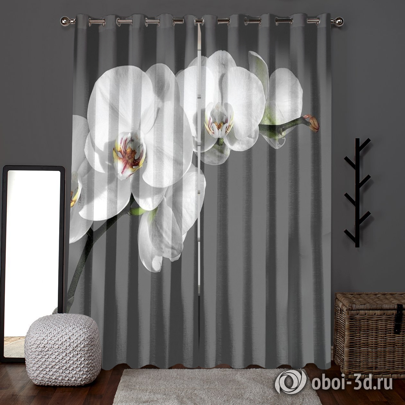 Фотошторы «Белая орхидея на сером фоне» вид 6