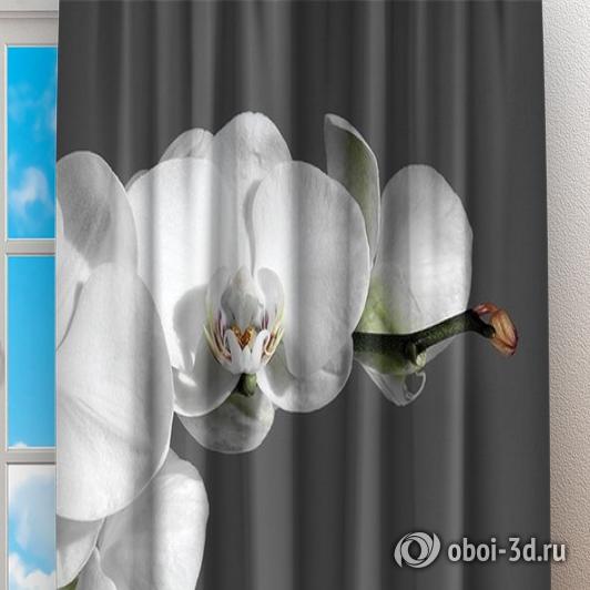 Фотошторы «Белая орхидея на сером фоне» вид 2