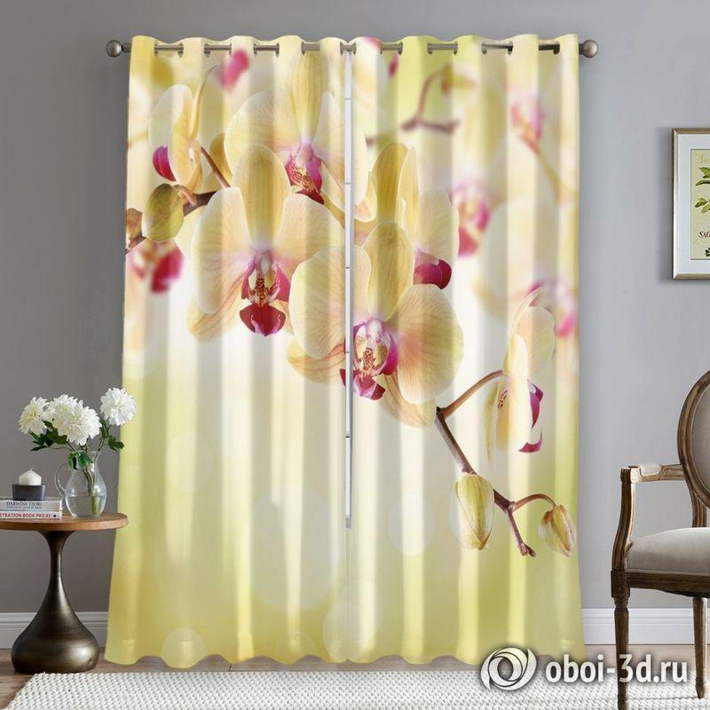 Фотошторы «Желтая орхидея» вид 5