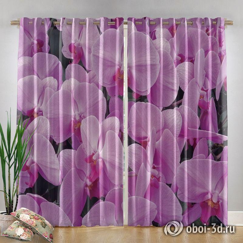 Фотошторы «Ковер из розовых орхидей» вид 4