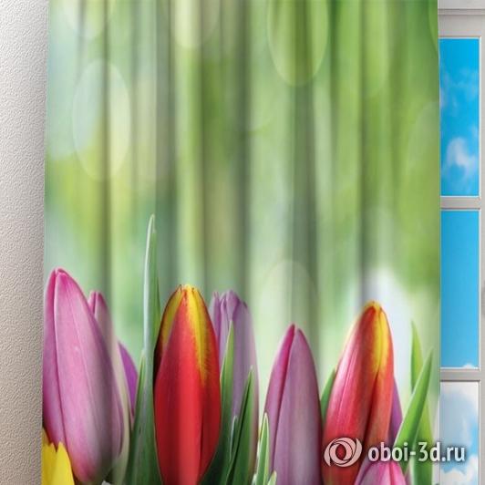 Фотошторы «Разноцветные тюльпаны» вид 3
