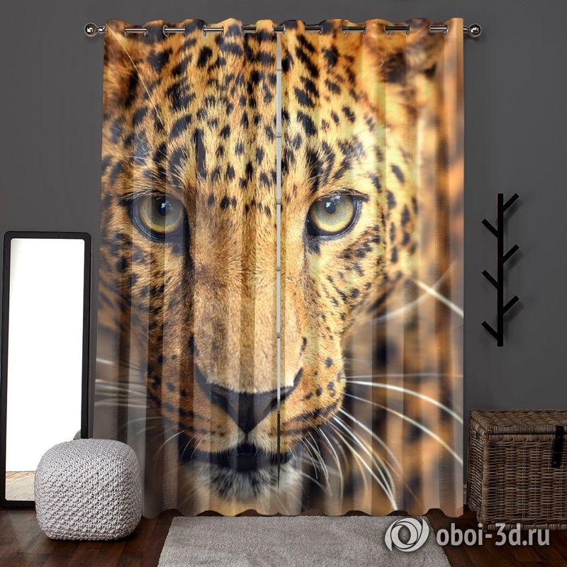 Фотошторы «Леопард портрет» вид 6