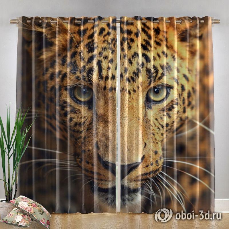 Фотошторы «Леопард портрет» вид 4