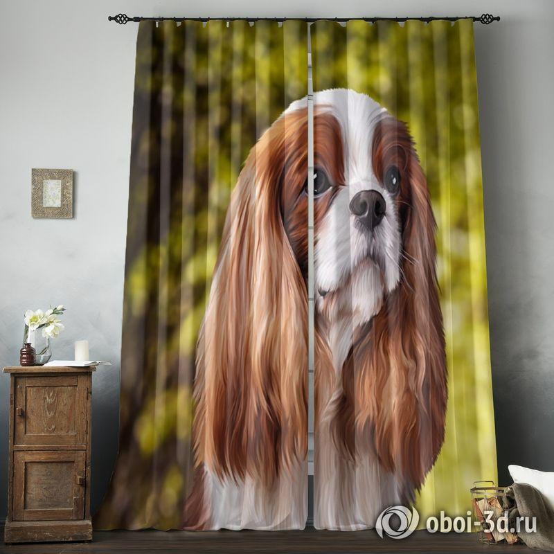 Фотошторы «Длинноухая собачка» вид 8