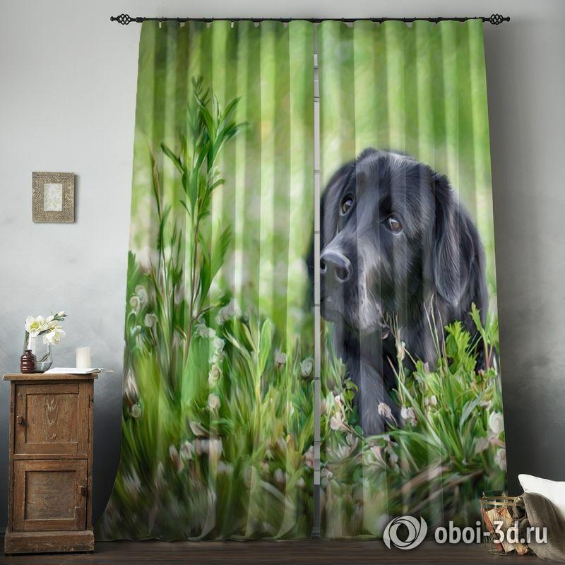 Фотошторы «Собачка в траве» вид 8