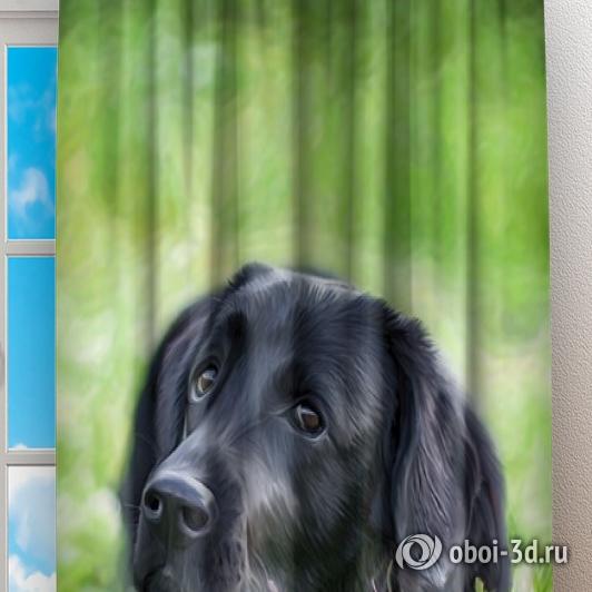 Фотошторы «Собачка в траве» вид 2
