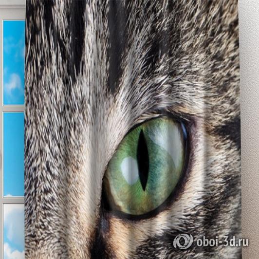 Фотошторы «Кошачий взгляд» вид 2