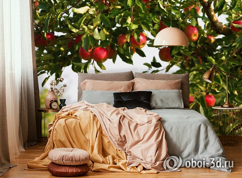 3D Фотообои  «Яблоки»  вид 5