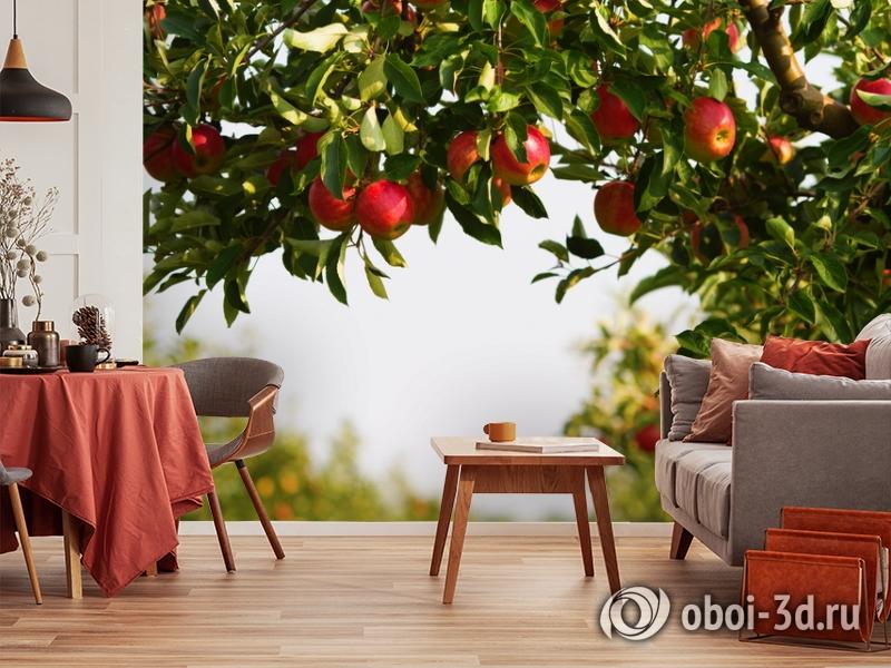 3D Фотообои  «Яблоки»  вид 4