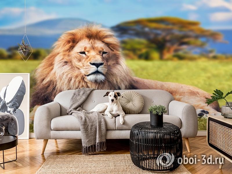 3D Фотообои  «Лев»  вид 4