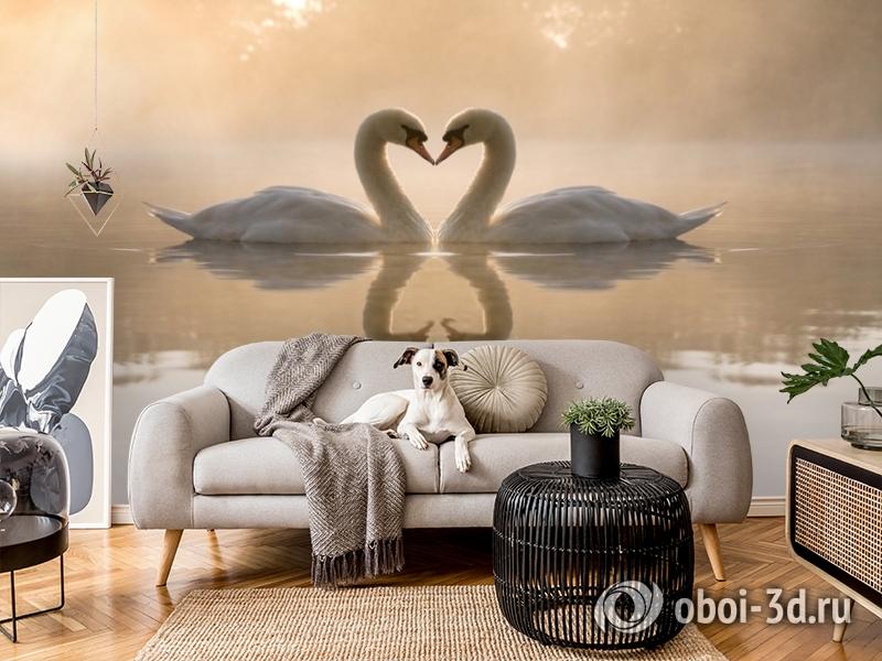 3D Фотообои «Влюбленные лебеди» вид 4