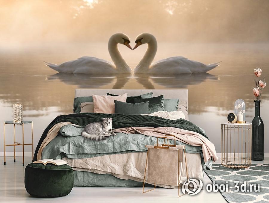 3D Фотообои «Влюбленные лебеди» вид 3