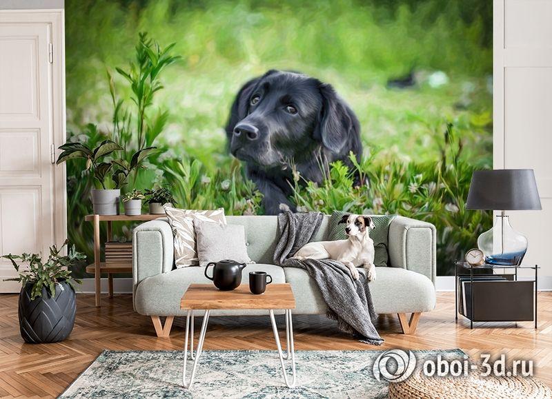 3D Фотообои «Собачка в траве» вид 6