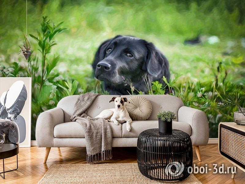 3D Фотообои «Собачка в траве» вид 4