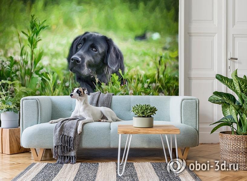 3D Фотообои «Собачка в траве» вид 2