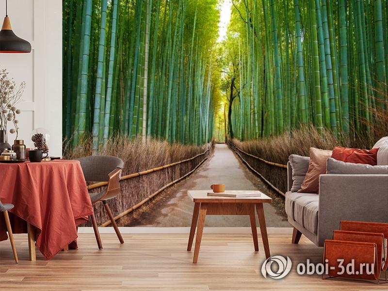 3D Фотообои «Бамбуковый лес» вид 5