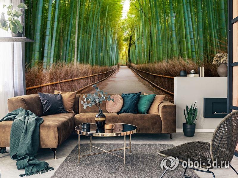 3D Фотообои «Бамбуковый лес» вид 3