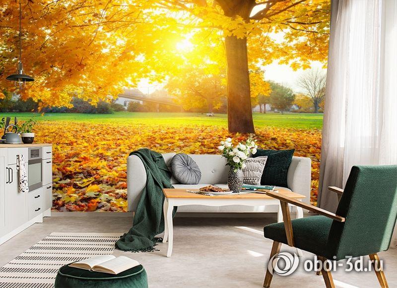 3D Фотообои  «Осенний парк»  вид 6
