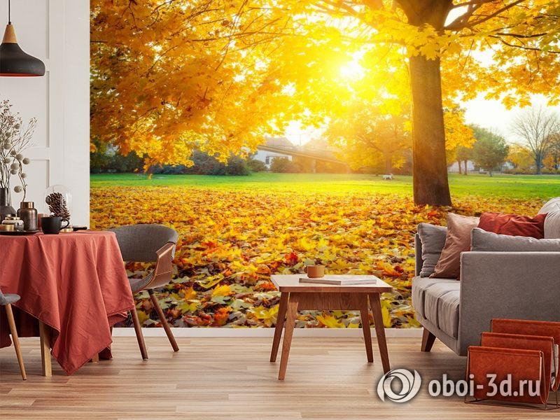 3D Фотообои  «Осенний парк»  вид 5