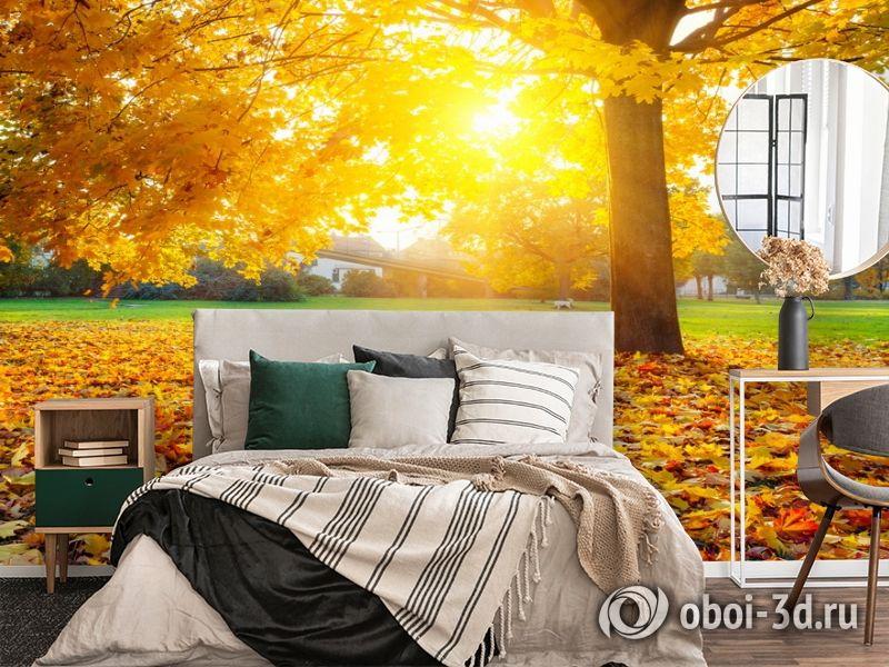 3D Фотообои  «Осенний парк»  вид 4