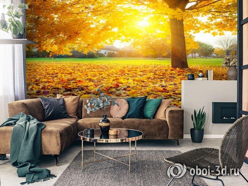 3D Фотообои  «Осенний парк»  вид 3