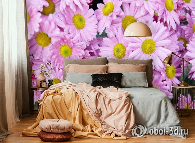 3D Фотообои  «Хризантемы»  вид 6