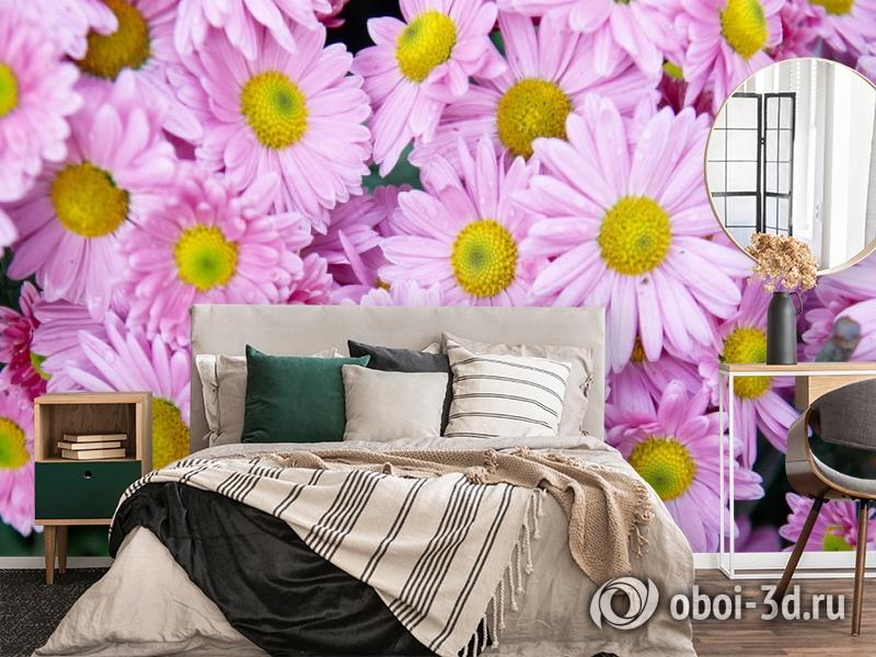 3D Фотообои  «Хризантемы»  вид 4