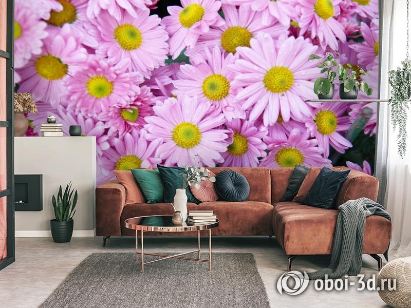 3D Фотообои  «Хризантемы»  вид 3