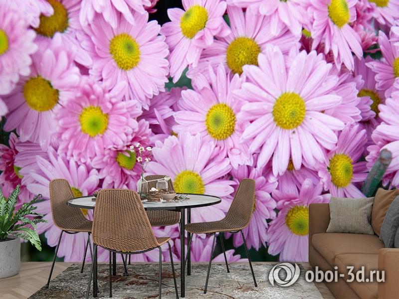 3D Фотообои  «Хризантемы»  вид 2