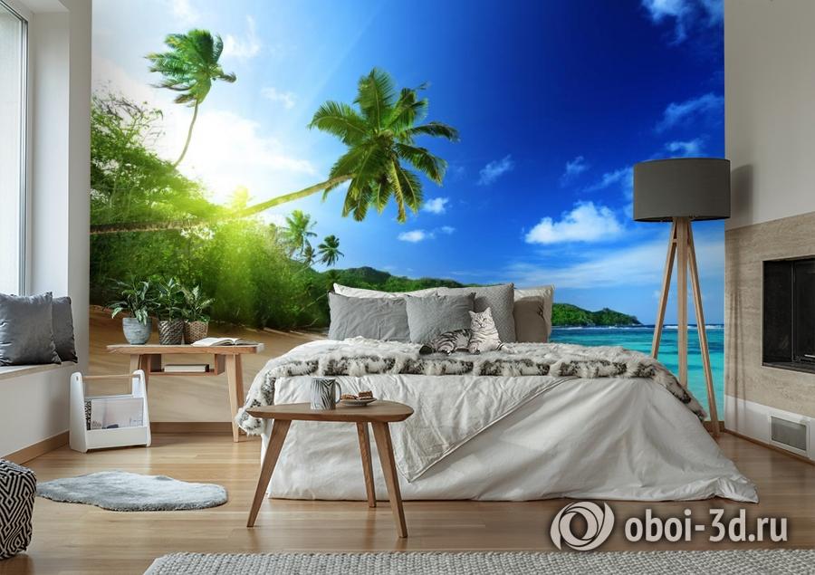 3D Фотообои  «Пальма на пляже»  вид 6