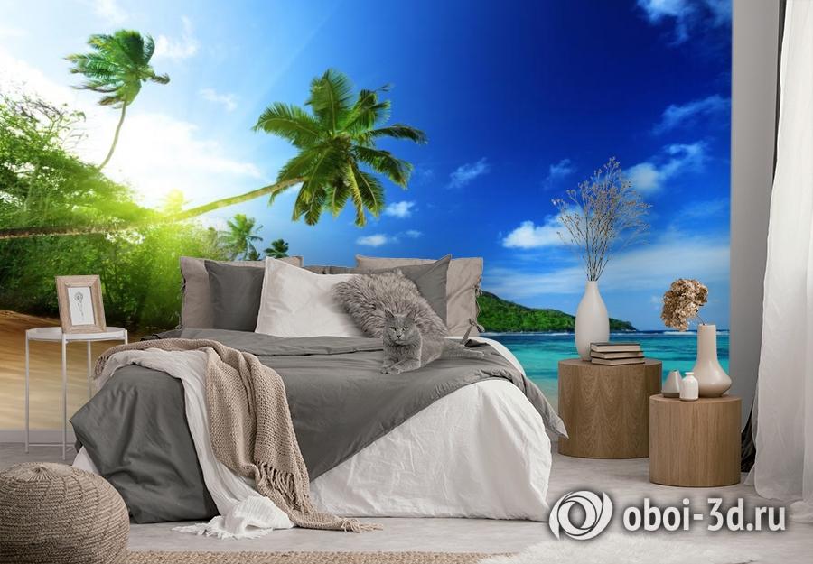 3D Фотообои  «Пальма на пляже»  вид 3