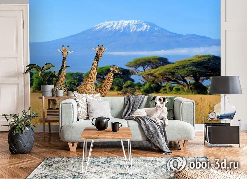3D Фотообои «Жирафы в саванне» вид 6