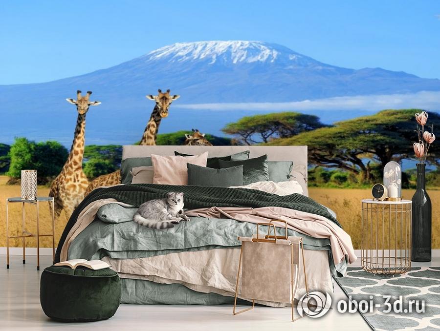 3D Фотообои «Жирафы в саванне» вид 3