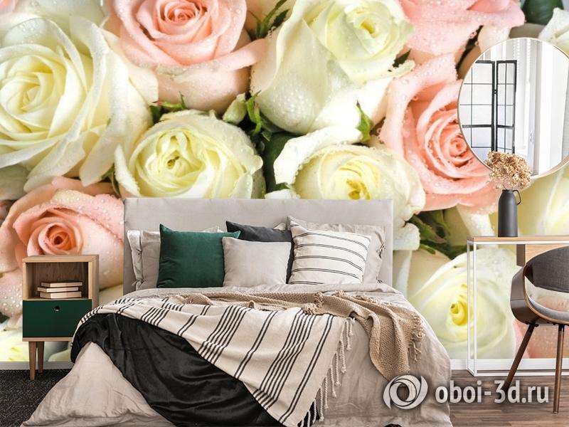 3D Фотообои «Салатово-розовые розы» вид 4
