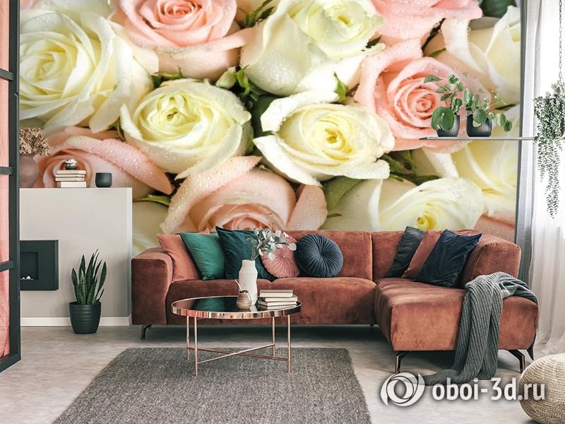 3D Фотообои «Салатово-розовые розы» вид 3