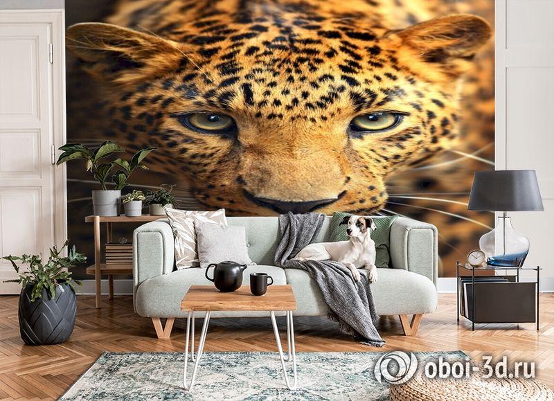 3D Фотообои  «Леопард портрет»  вид 6