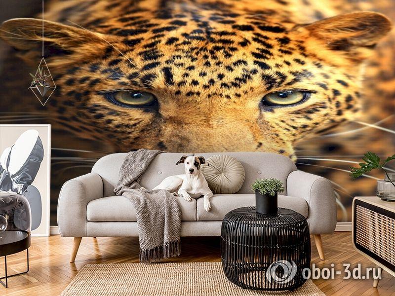 3D Фотообои  «Леопард портрет»  вид 4