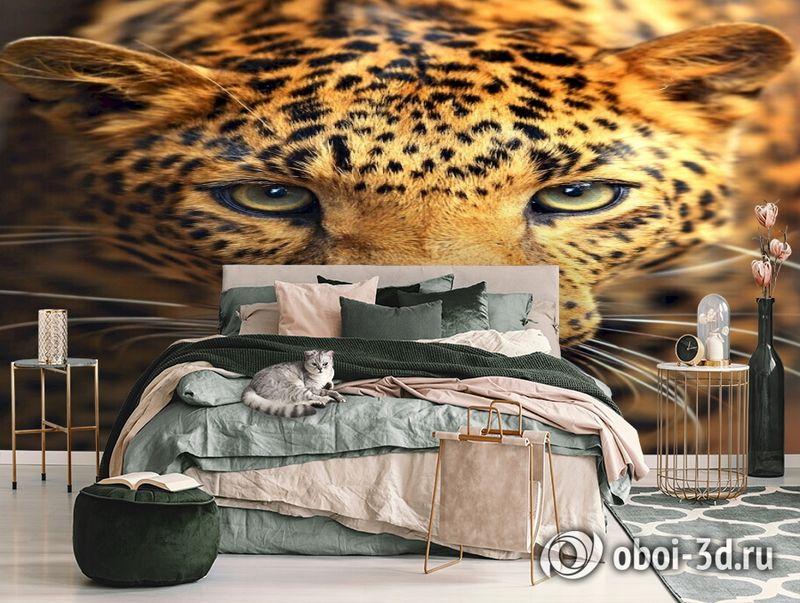 3D Фотообои  «Леопард портрет»  вид 3