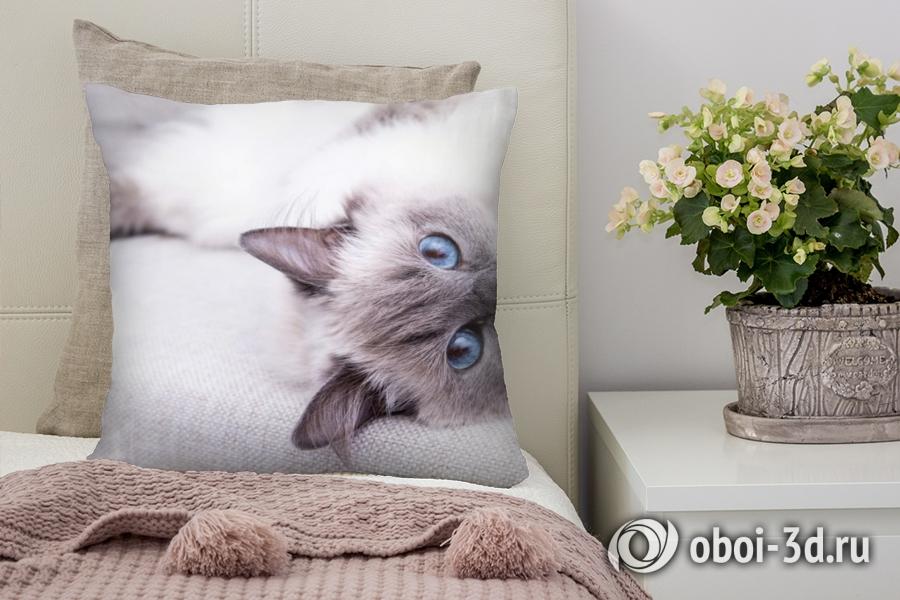 3D Подушка «Голубоглазая кошка»