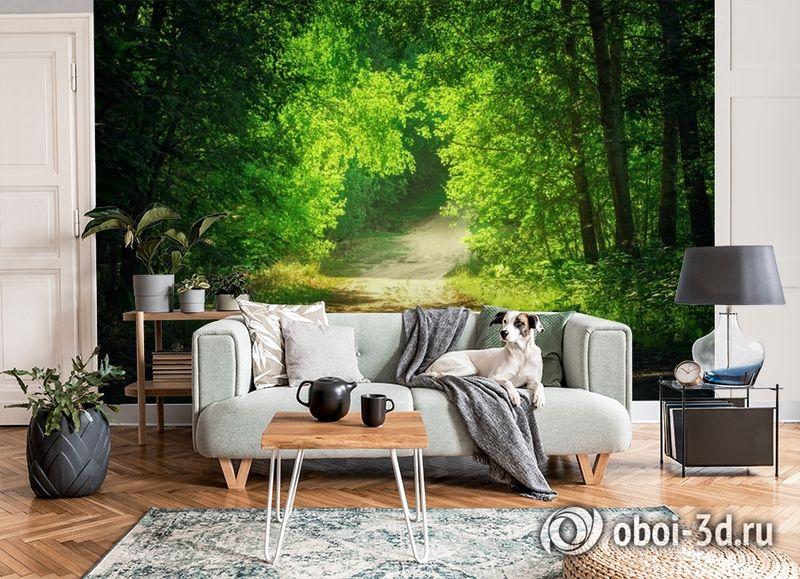 3D Фотообои  «Тропинка в зеленом лесу»  вид 7