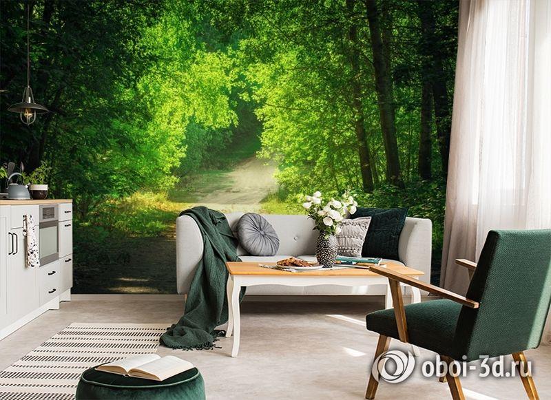 3D Фотообои  «Тропинка в зеленом лесу»  вид 6