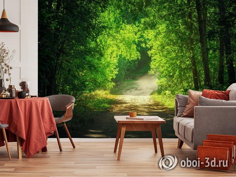3D Фотообои  «Тропинка в зеленом лесу»  вид 5