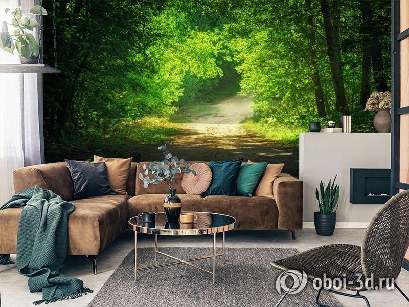 3D Фотообои  «Тропинка в зеленом лесу»  вид 3