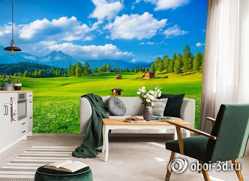 3D Фотообои  «Деревня в Альпийской долине»  вид 6