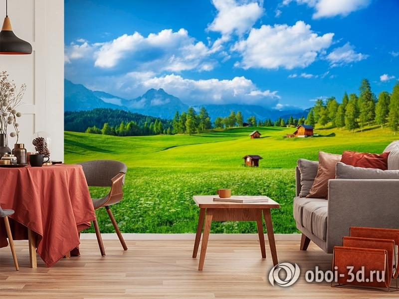 3D Фотообои  «Деревня в Альпийской долине»  вид 5